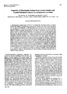 Properties of Mitochondria Isolated from Cyanide ... - Europe PMC
