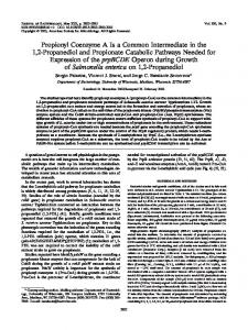 Propionyl Coenzyme A Is a Common Intermediate in the 1,2 ...