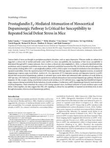 Prostaglandin E2 -Mediated Attenuation of ... - Semantic Scholar