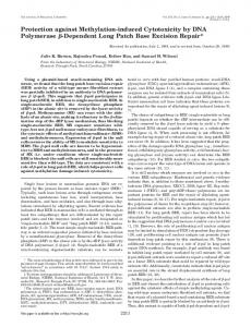 Protection against Methylation-induced Cytotoxicity by DNA ...