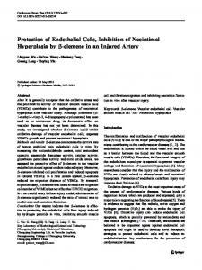 Protection of Endothelial Cells, Inhibition of Neointimal ... - Springer Link