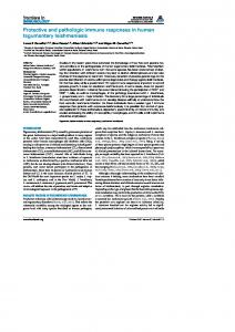 Protective and pathologic immune responses in human ... - Frontiers