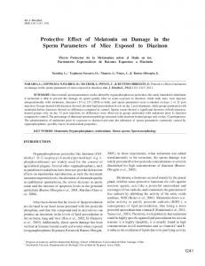 Protective Effect of Melatonin on Damage in the ... - Semantic Scholar