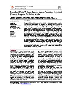 Protective Effect of N-Acetyl Cysteine Against