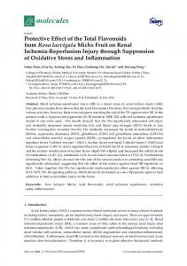 Protective Effect of the Total Flavonoids from Rosa ... - Semantic Scholar