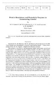 Protein Breakdown and Proteolytic Enzymes in ...