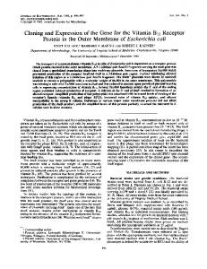 Protein in the Outer Membrane of Escherichia coli - Journal of ...
