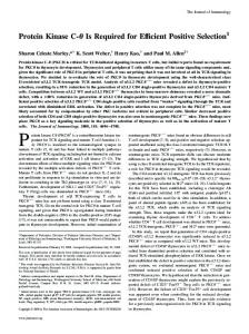 Protein Kinase C- Is Required for Efficient Positive