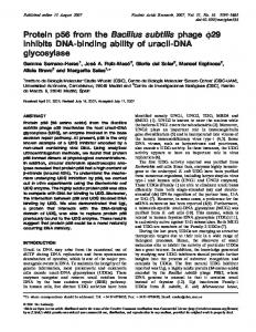 Protein p56 from the Bacillus subtilis phage r29 inhibits DNA-binding ...