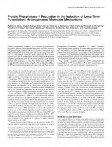 Protein Phosphatase-1 Regulation in the Induction
