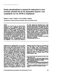 Protein phosphorylation is required for ... - Wiley Online Library