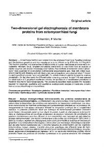 proteins from ectomycorrhizal fungi