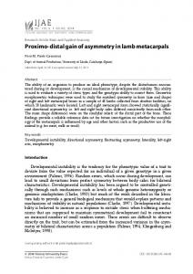 Proximo-distal gain of asymmetry in lamb