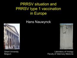 PRRSV situation and PRRSV type 1 vaccination in ...