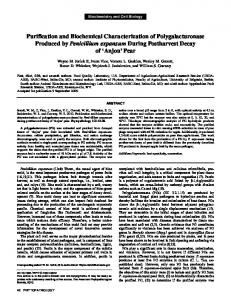 Purification and Biochemical Characterization of ... - APS Journals