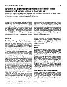 Purification and biochemical characterization of recombinant human ...