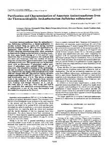 Purification and Characterization of Aspartate Aminotransferase from ...