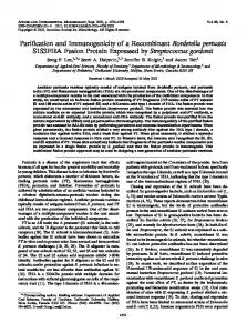 Purification and Immunogenicity of a Recombinant Bordetella ...