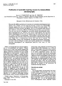 Purification of nucleotide-requiring enzymes by immunoaffinity