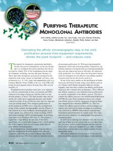 Purifying Therapeutic Monoclonal Antibodies