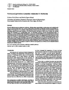 Purine and pyrimidine nucleotide metabolism in Mollicutes - SciELO