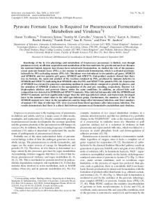 Pyruvate Formate Lyase Is Required for Pneumococcal Fermentative ...