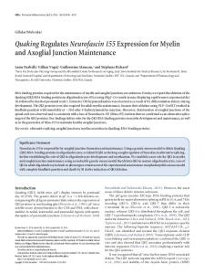 Quaking Regulates Neurofascin 155 Expression for Myelin and ...