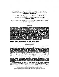 Quantification and digestion of testicular DNA in rats ...