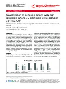 Quantification of perfusion defects with high resolution ... - Springer Link