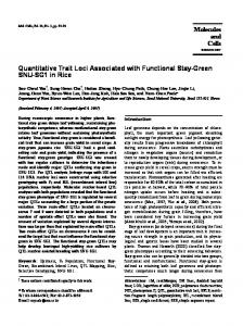 Quantitative Trait Loci Associated with Functional Stay-Green SNU ...