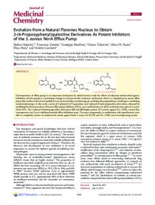 quinoline Derivatives As Potent Inhibitors of the S ... - ACS Publications