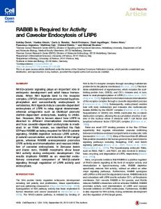 RAB8B Is Required for Activity and Caveolar Endocytosis ... - Cell Press