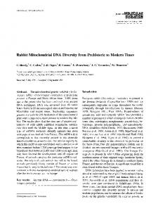 Rabbit mitochondrial DNA diversity from prehistoric to modern times