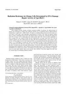 Radiation Resistance in Glioma Cells Determined by DNA ... - CiteSeerX