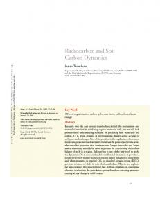 Radiocarbon and Soil Carbon Dynamics