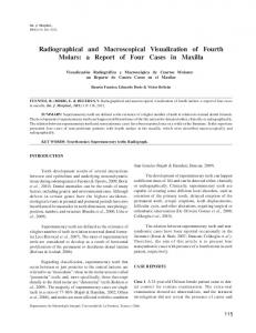 Radiographical and Macroscopical Visualization of ... - Semantic Scholar