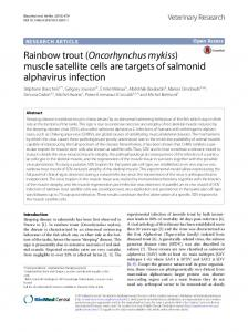 Rainbow trout (Oncorhynchus mykiss) - BioMed Central