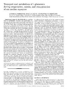 'Ransport and metabolism of L-glutamate during oxygenation, anoxia ...