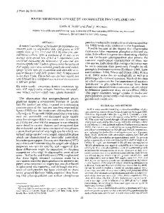RAPID AMMONIUM UPTAKE BY ... - Wiley Online Library