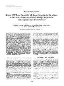 Rapid ATP Loss Caused by Methamphetamine ... - Wiley Online Library