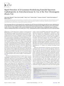 Rapid Detection of - Journal of Clinical Microbiology - American ...