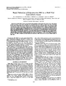 Rapid Detection of Polyomavirus BK by a Shell Vial Cell Culture Assay