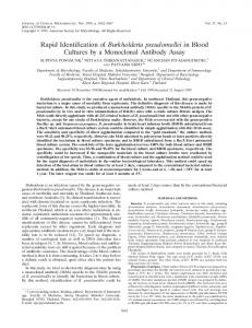 Rapid Identification of Burkholderia pseudomallei in Blood Cultures by ...