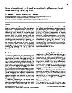 Rapid stimulation of cyclic AMP production by aldosterone in rat inner ...