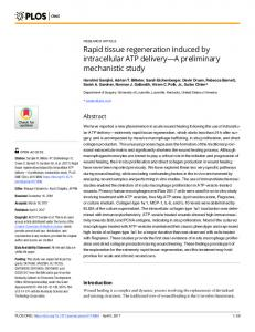 Rapid tissue regeneration induced by intracellular ATP delivery - PLOS