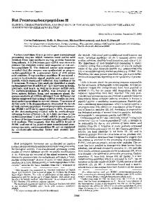 Rat Preprocarboxypeptidase H - The Journal of Biological Chemistry