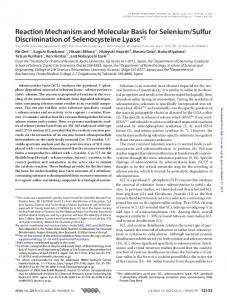 Reaction Mechanism and Molecular Basis for ...