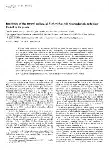 Reactivity of the tyrosyl radical of Escherichia ... - Wiley Online Library