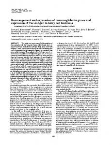 Rearrangement and expression of immunoglobulin ... - Europe PMC