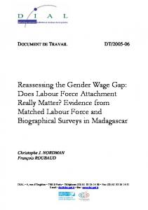 Reassessing the Gender Wage Gap: Does Labour Force ... - DIAL / IRD